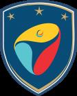 Institute FC