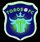 Toros FC 7v7 Women
