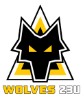 Arkansas Wolves FC 23U